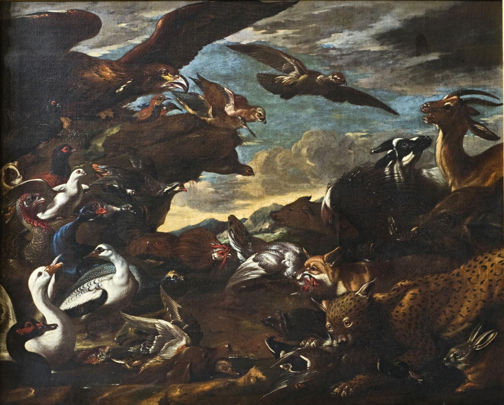The Battle of Birds and Beasts, Jacopo da Castello (1640-1705).