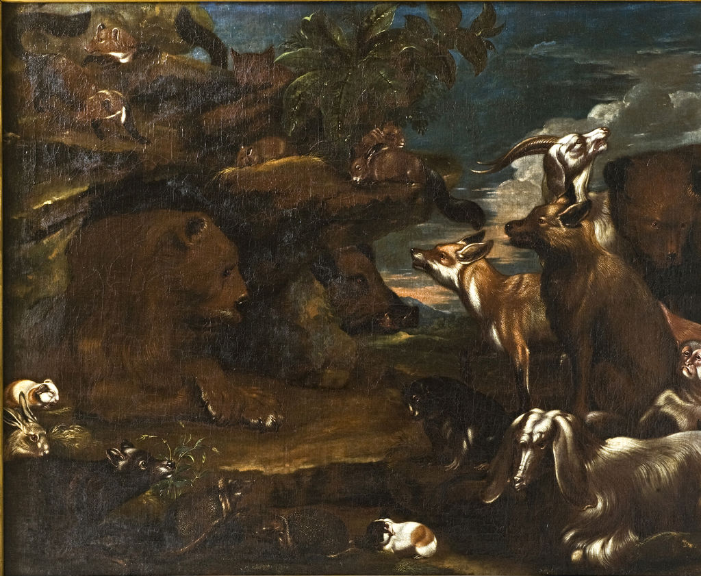 Animals in the Garden of Eden, Jacopo da Castello (1640-1705).