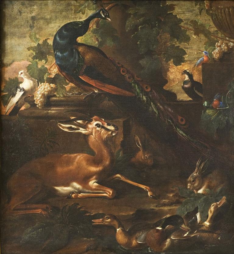 Birds and Beasts, Jacopo da Castello (1640-1705).