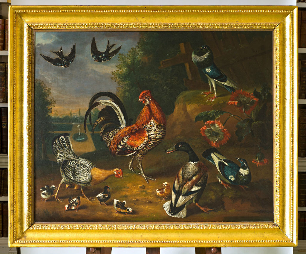 Farmyard Poultry with other Fowl and Birds in a Park Setting by Peter Paillou Snr. (c.1720-c.1790).