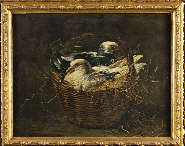 Pigeons in a Basket, by David de Coninck (c1636-c1699).