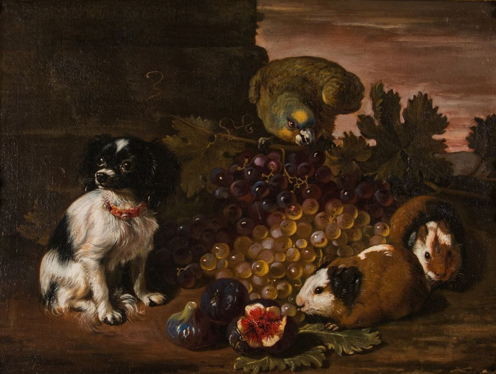 A Miniature Spaniel, Parrot, Guinea Pigs and Fruit, by David de Coninck (c1636-c1699).