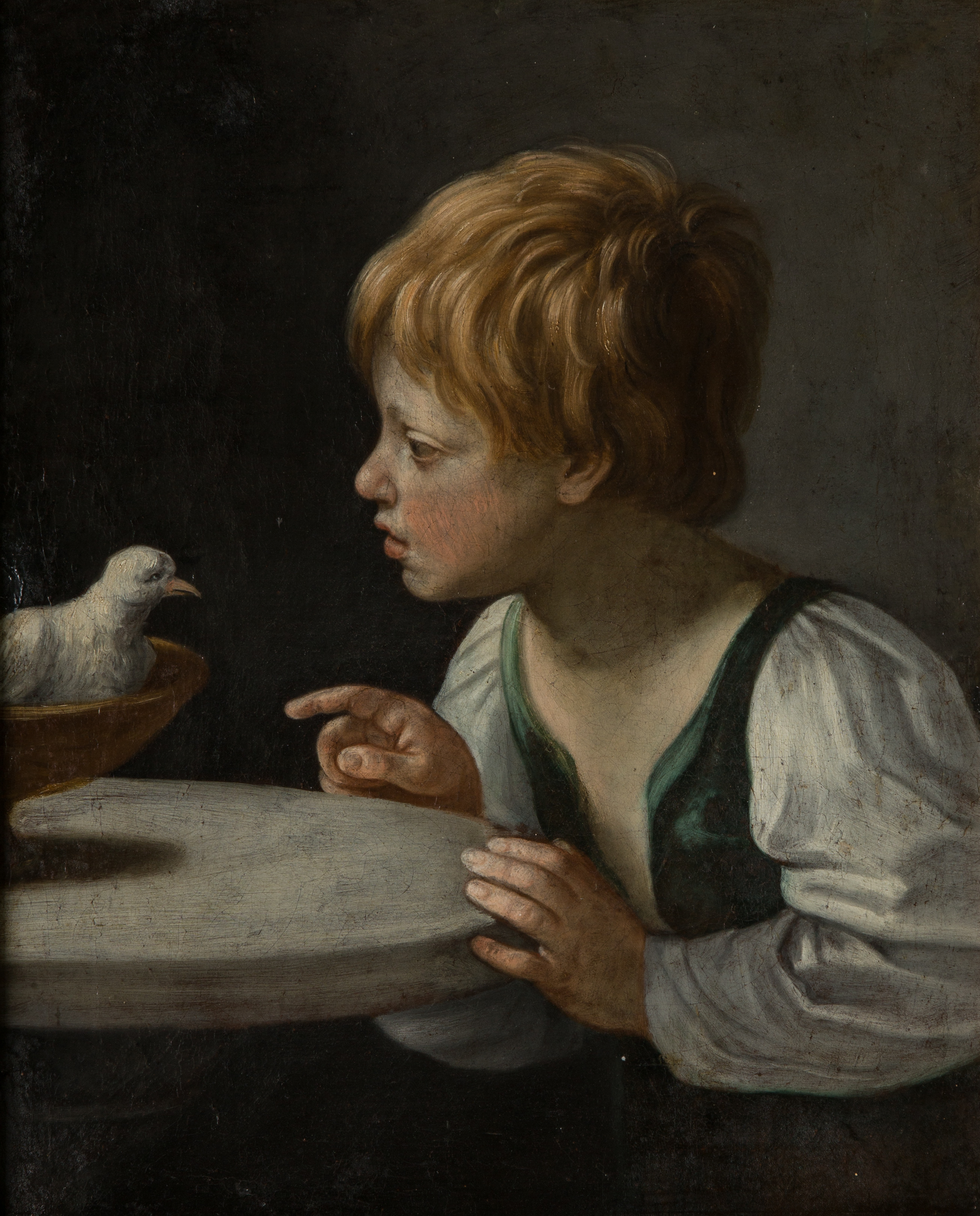 A Boy With A Dove After Guido Reni 1575 1642