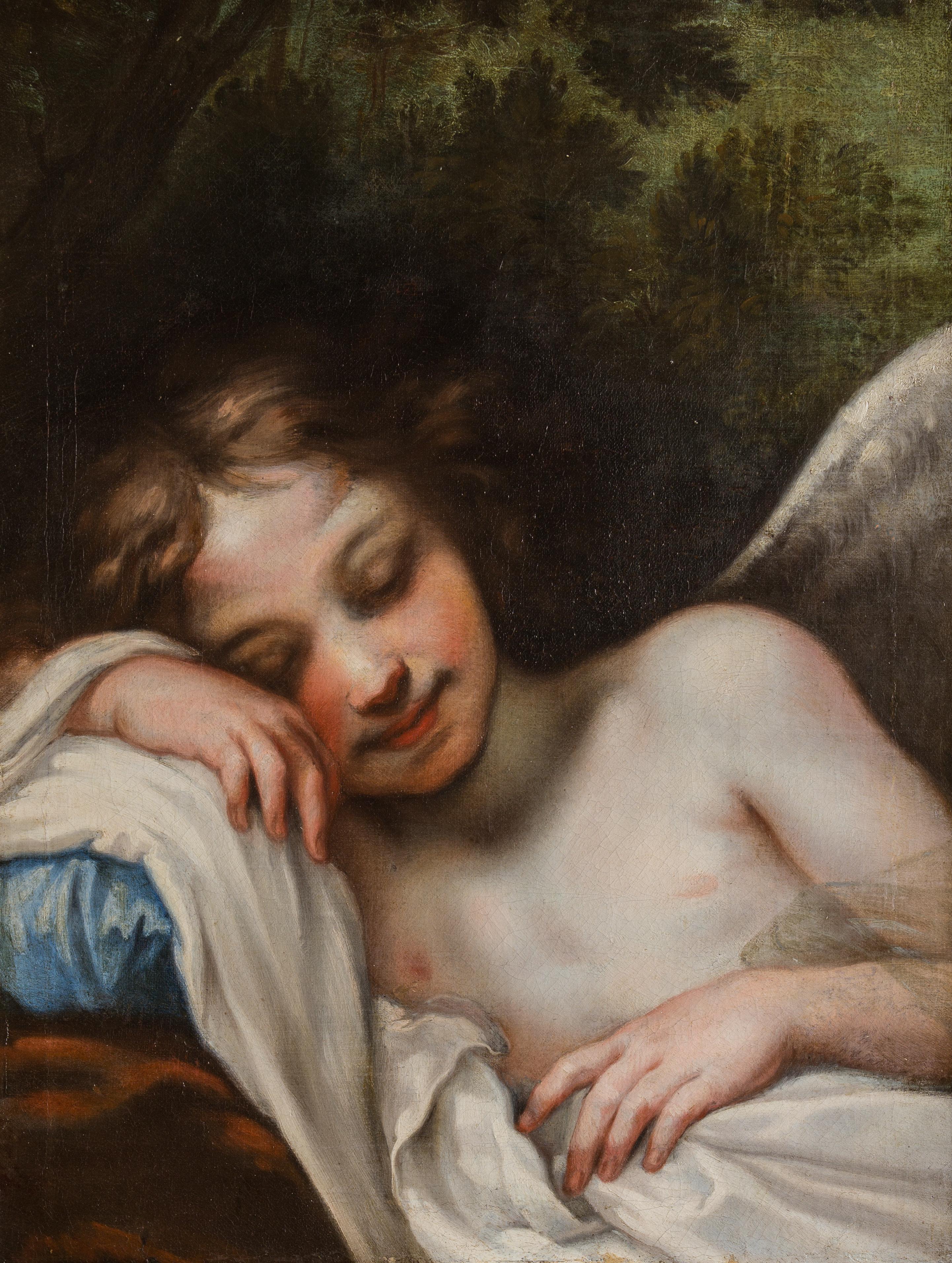 A Sleeping Cupid, by Baldassare Franceschini (1611-1690).