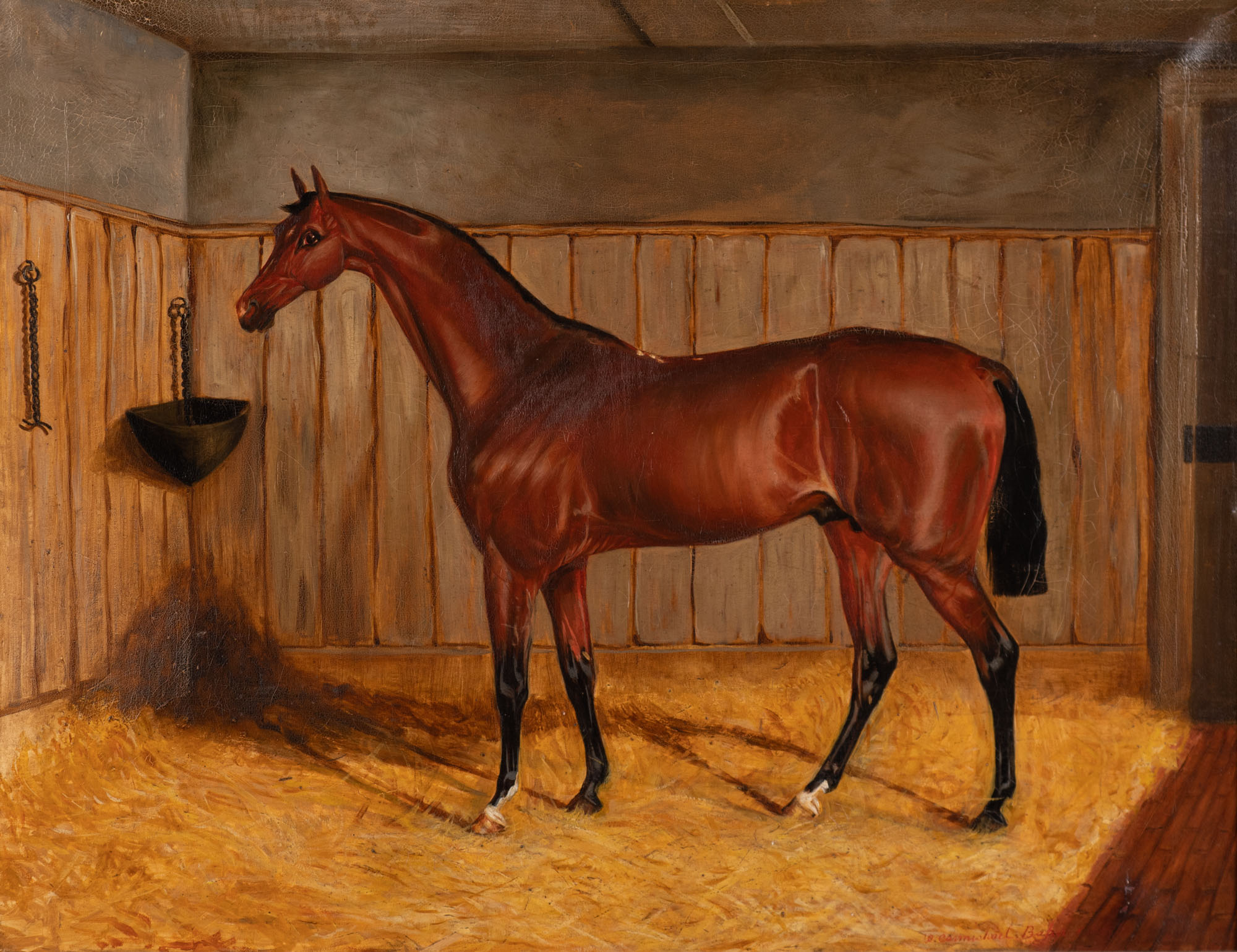 Troilus, a Dark Bay Racehorse, in a Stable, by W. Carmichael Baker.