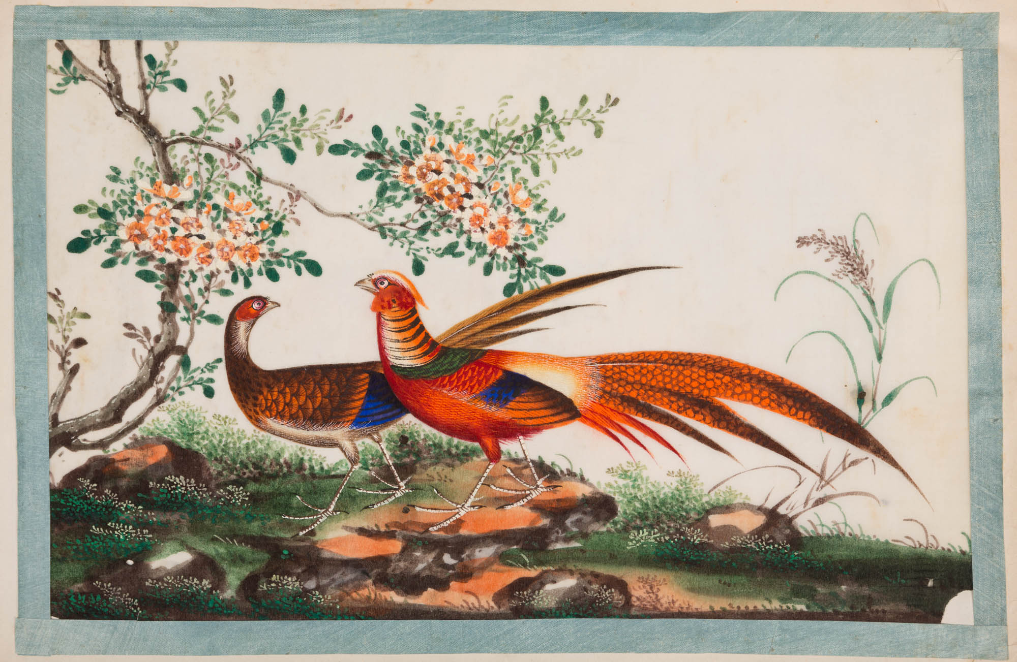 A silk-bound album of Chinese watercolours of birds, 19th Century.