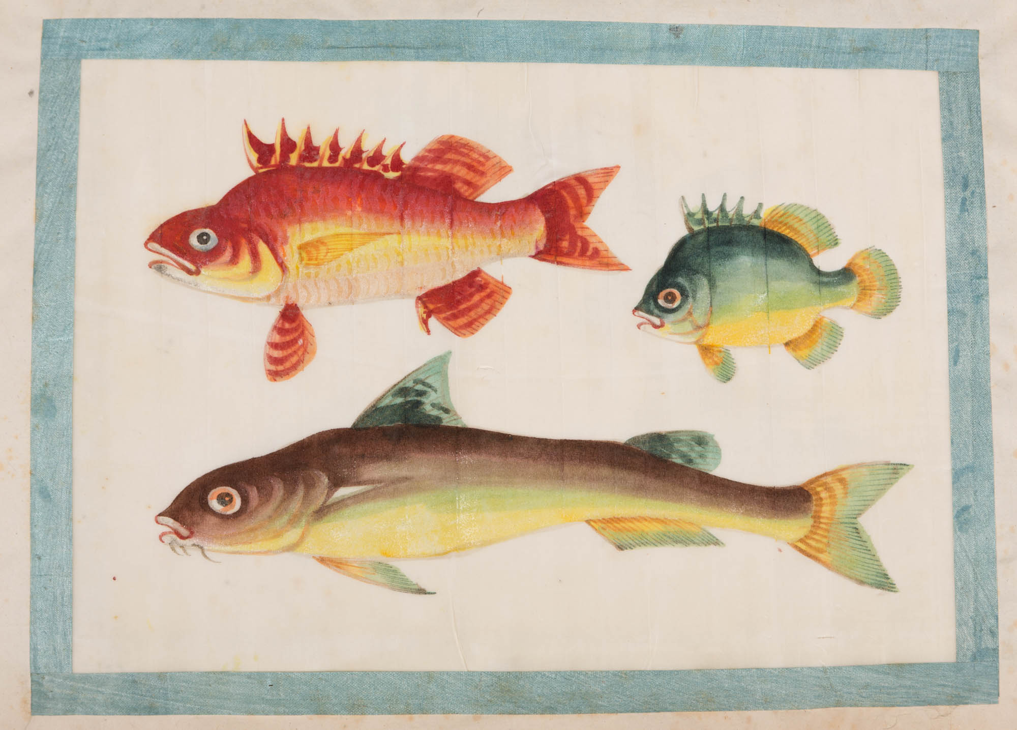A silk-bound album of Chinese watercolours of fish, 19th Century.